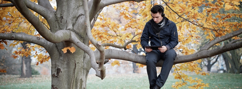 Young man in park tree