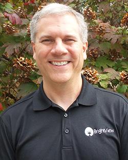 Ken Billig Information Services & Technology